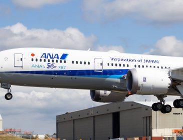 All Nippon Airways ar putea permite animalelor de companie să călătorească cu proprietarii